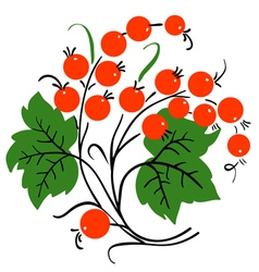 bunch of red currant ripe berry vector image