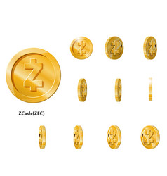 gold rotate zcash frames vector image vector image