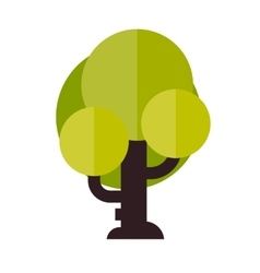 a tree in flat style vector image