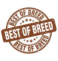 Best of breed brown grunge stamp vector