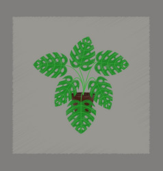 Flat shading style plant monstera vector