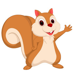Happy squirrel cartoon presenting vector