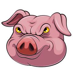 Head an pig cartoon vector