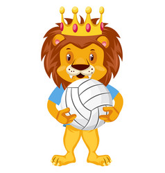 lion with volleyball on white background vector image