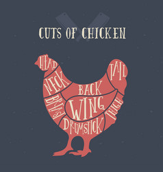 Meat cuts - chicken diagrams for butcher shop vector