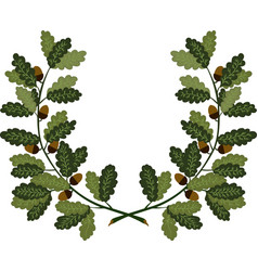 oak branches vector image