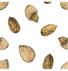 Seamless pattern with hand drawn almonds vector