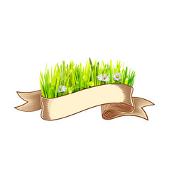 ribbon with green grass and chamomile vector image vector image