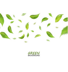 Blurred fresh flying green leaves quality 3d vector