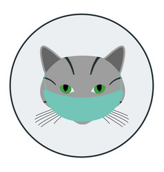 Cats avatar with medical mask vector