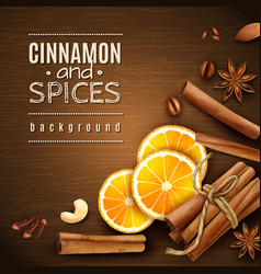 Cinnamon and spices background vector
