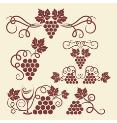 grape vine elements vector image