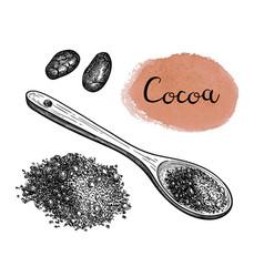 Ink sketch of cocoa powder vector