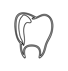 Monochrome hand drawn contour of tooth vector