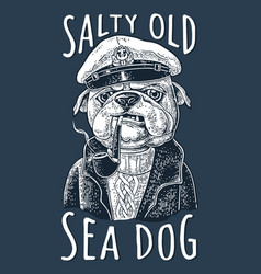 sea dog smoking pipe and dressed in captain hat vector image
