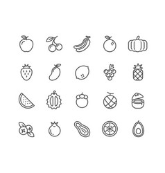 simple set of fruits thin line icons vector image