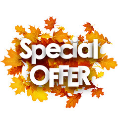 autumn special offer background with leaves vector image