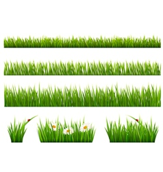 Big collection of green grass vector image
