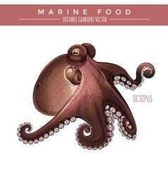 octopus marine food vector image