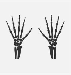 wrist hands bones vector image