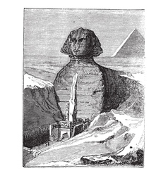Great Sphinx vintage engraving vector image