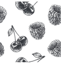 hand drawn engraving style black and white vector image