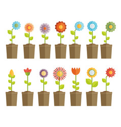 Colourful field of spring flowers vector