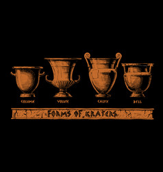 forms kraters greek vessel shapes vector image