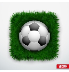 Icon football ball in green grass vector