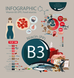 Vitamin b3 pp nutritional sources vector