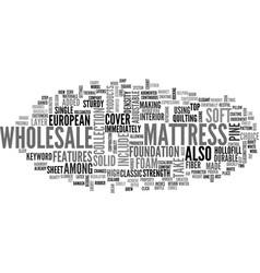 Wholesale mattress text word cloud concept vector