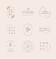 Aesthetic fashion logo business template vector
