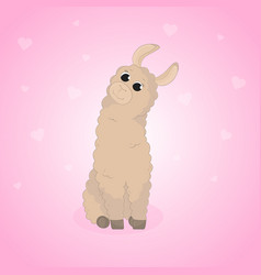 Cartoon llama cute lama alpaca card on colorful vector