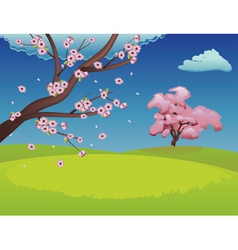 Sakura on Grass Field2 vector image