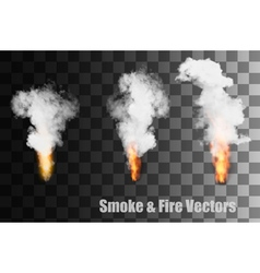 Flames with smoke icons vector