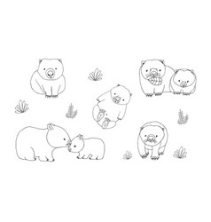 set of cute young wombat in various poses vector image vector image