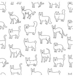 Cats seamless pattern black white domestic vector
