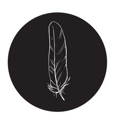 detailed outline feather in a black circle vector image