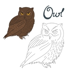 Educational game connect dots to draw owl bird vector