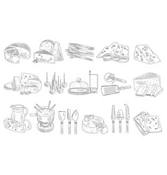 hand drawn set of different types of cheese vector image