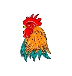 head rooster hand drawn style colorful cock vector image
