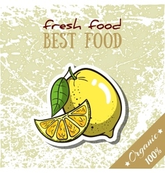 Healthy Food Lemon vector image