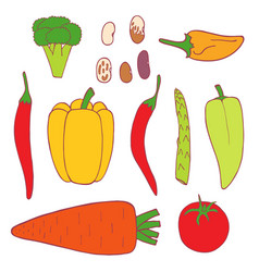 isolated flat set vegetable vector image