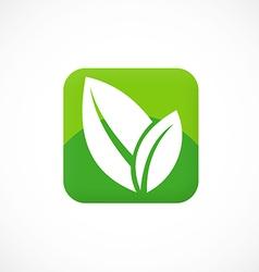 leaf icon square social media logo vector image