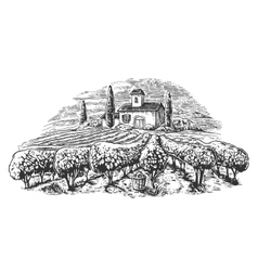Rural landscape with villa vineyard fields vector