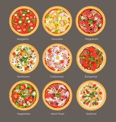 set different pizza top vector image