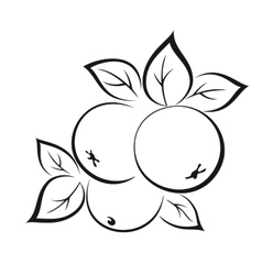 Apples with Leaves Black Pictogram vector image vector image