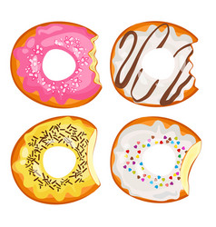 bitten donuts in sweet fruit and chocolate glaze vector image vector image