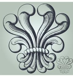 lis flower vector image