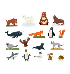 cartoon collection of different arctic and vector image